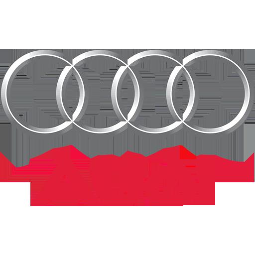 Audi Performance & Economy ECU Remapping